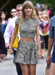 You-might-even-bump-elbows-Taylor-Swift-stroll